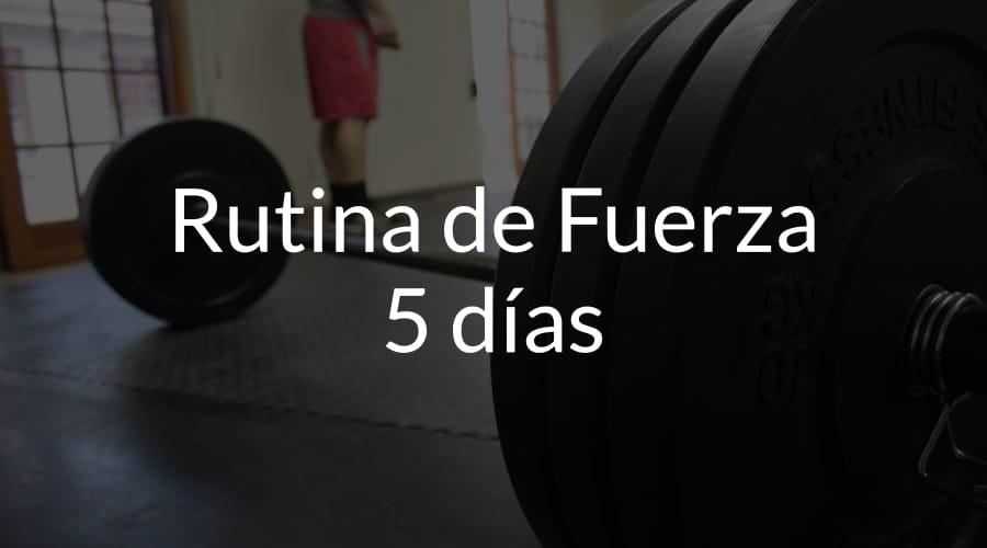 entrenamiento fuerza 5 dias